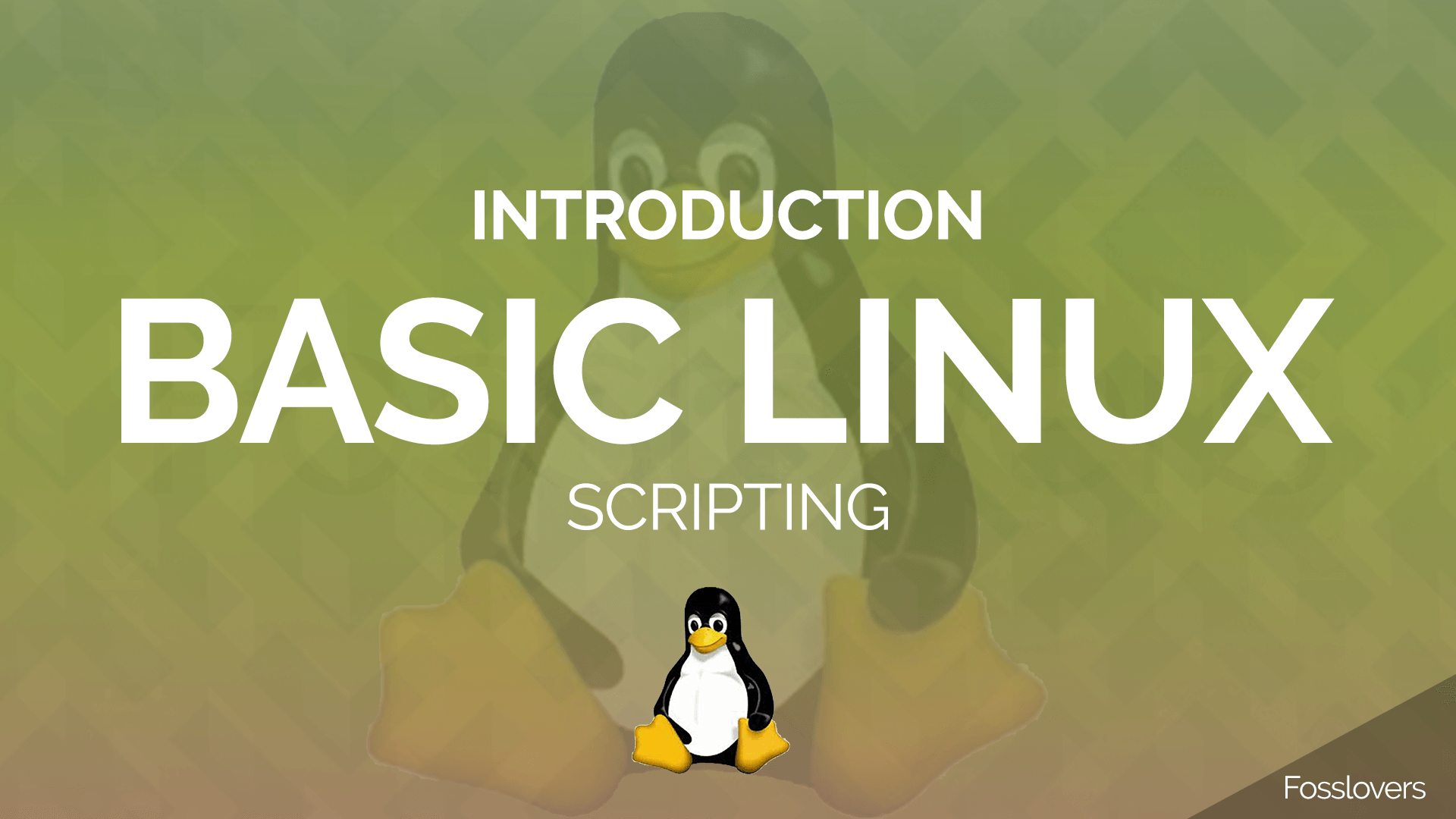 Introduction of Basic Linux Shell Scripting Fosslovers