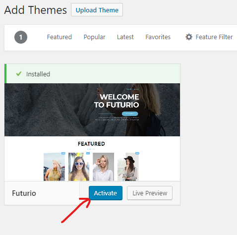 How to Install a WordPress Theme 06
